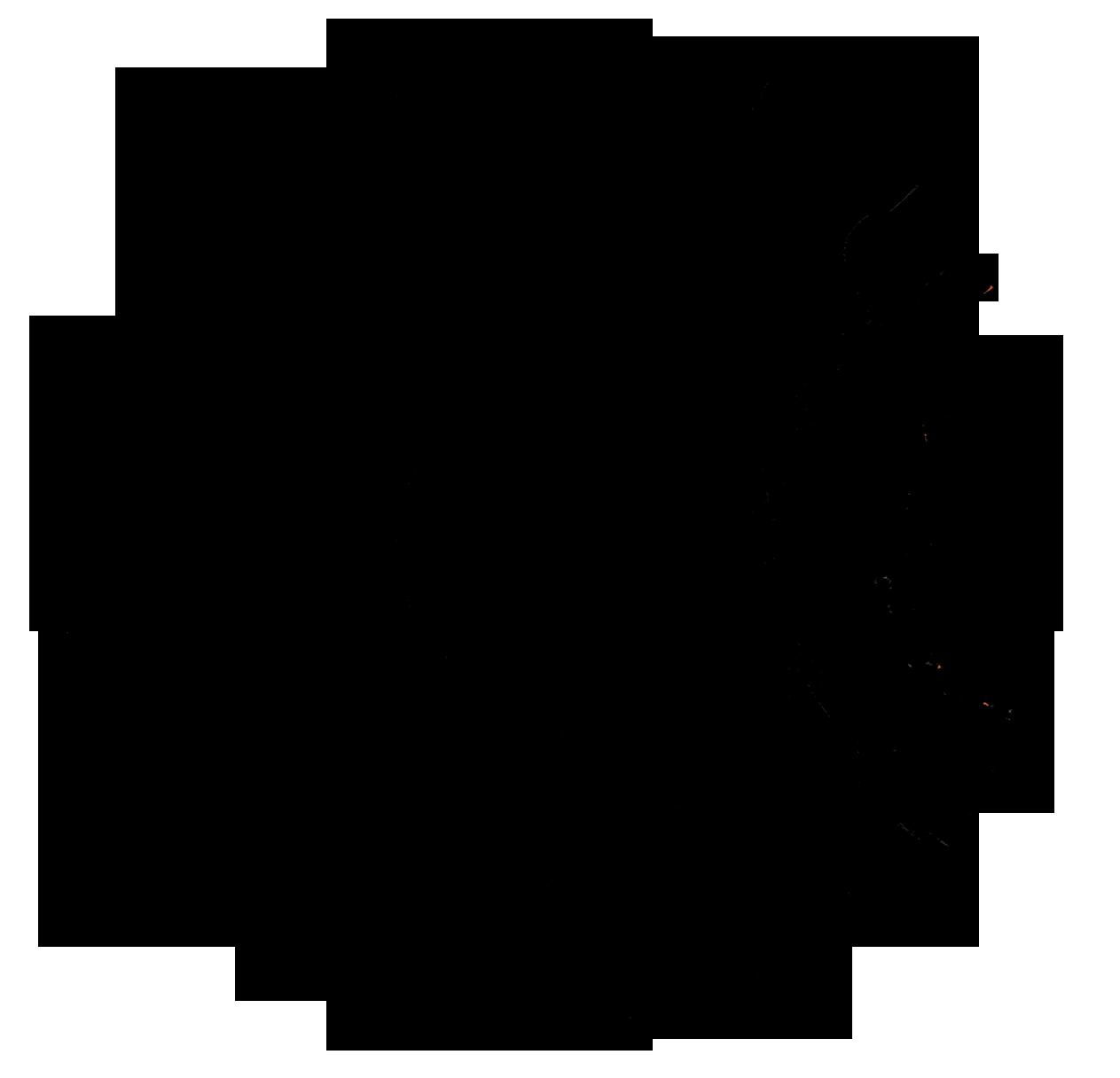 Tierra de Mompox , un intervención a la tradición